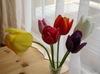 Tulip093