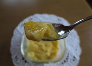Mango03